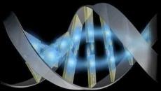genom.uman
