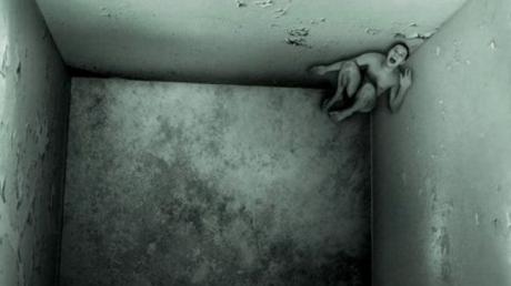 """""""Într-o zi în celula mea a intrat o muscă şi am început să vorbesc cu ea. La început am încercat să o ucid, dar apoi acest proces a devenit o activitate"""
