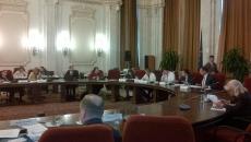 comisia de revizuire a constitutiei