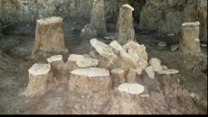 sit arheologic