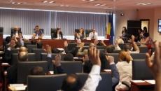 consiliul general