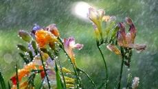 vremea de florii