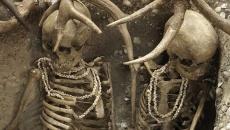 schelete