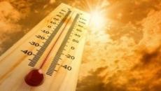 temperaturi.caniculă