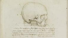 craniu.Da.Vinci