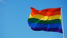 remus cernea steag gay