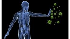 sistem.imunitar