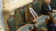 coroana senat