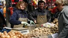 cartofi piata