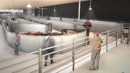 Terminal pentru animale pe Aeroportul JFK