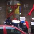 proteste dna elena udrea