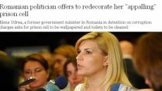Elena Udrea în The Telegraph