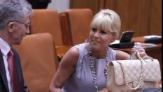 Elena Udrea in Parlament