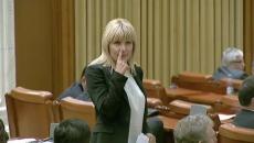 Elena Udrea Parlament