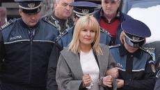 Elena Udrea, catuse