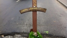 cruce sectorul 6