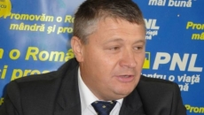 Florin Ţurcanu, PNL
