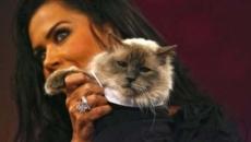 Oana Zavoranu cu pisica
