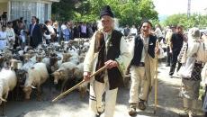 Ciobani