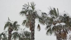 Florida zapada