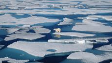 Calota glaciară din Groenlanda s-a topit într-un ritm nemaiîntâlnit, în anul 2019